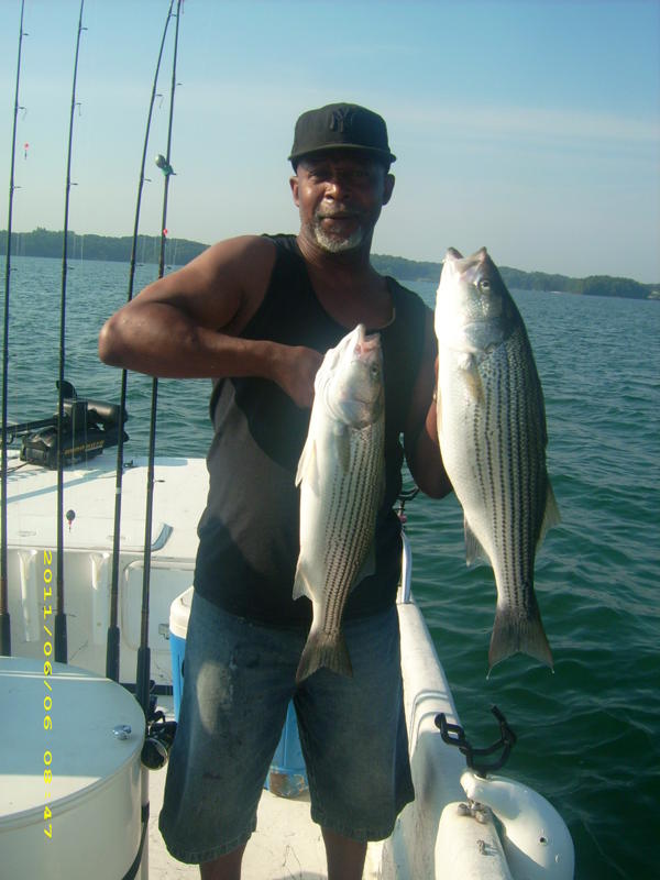 lake lanier striper fishing articles lake lanier georgia
