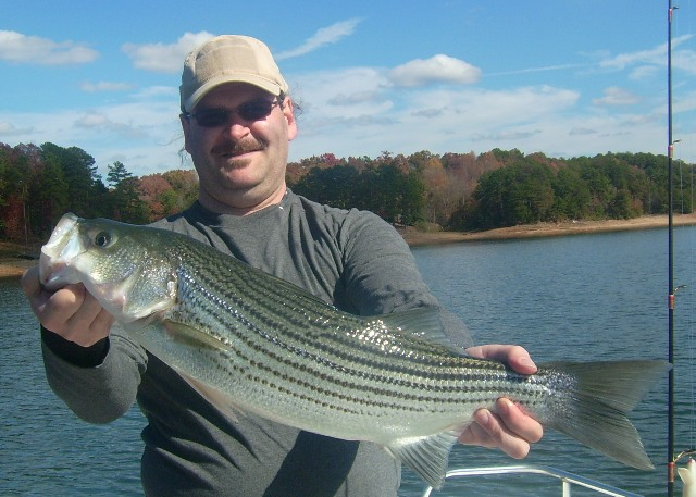 Lake lanier fishing reports 11 09 2011 lake lanier fishing for Lake lanier fishing spots