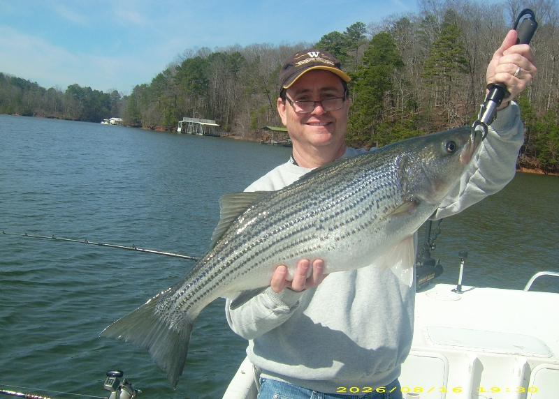 lake lanier fishing lake lanier fishing