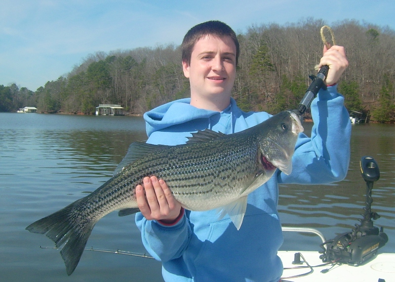 lake lanier striped bass fishing charter lake lanier fishing
